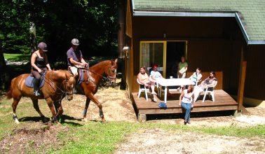 Activities Hameau de Gîtes de la Forêt